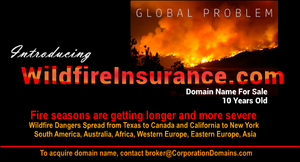 Wildfire Insurance domain name